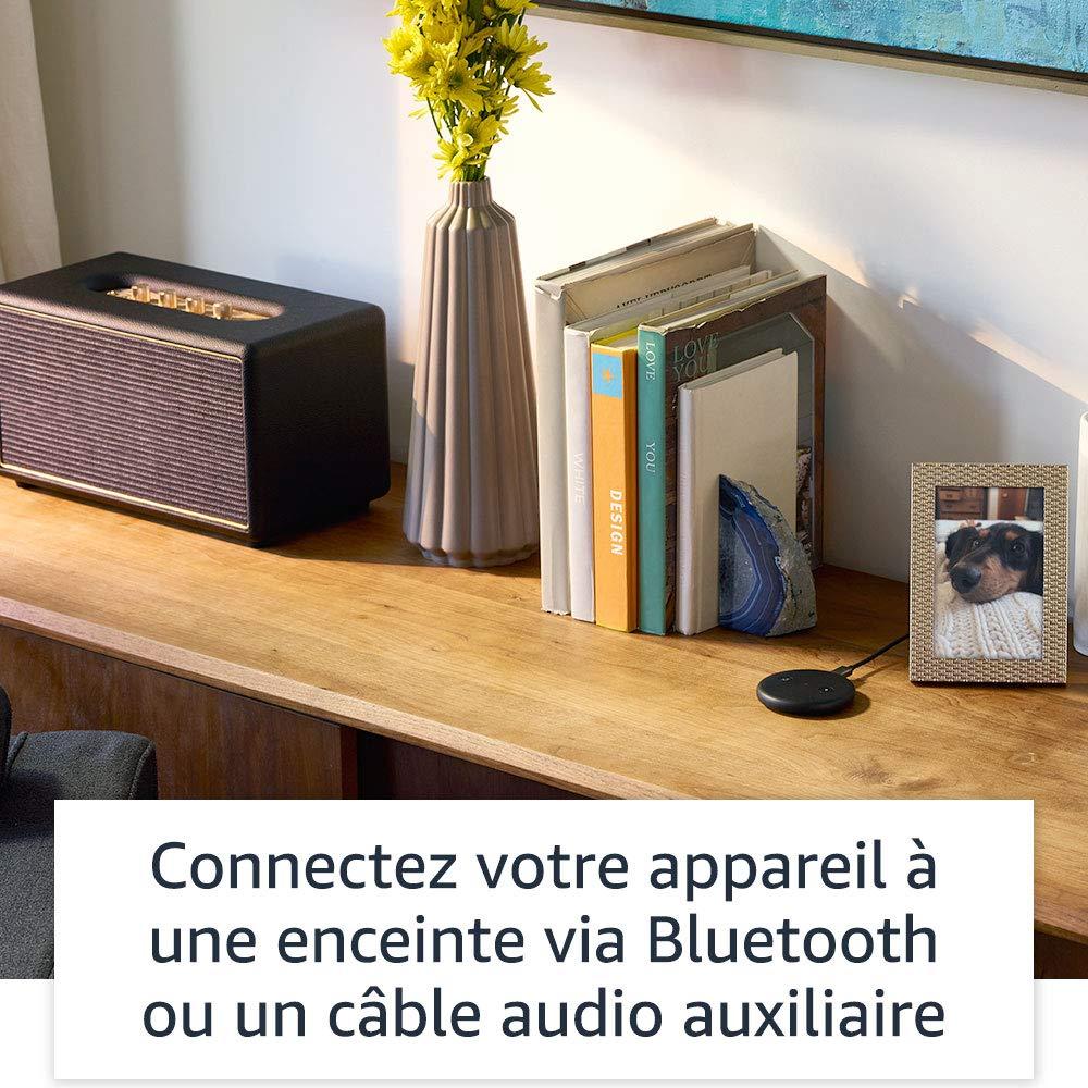 Echo Input Alexa