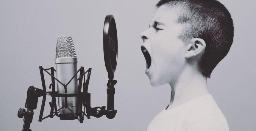 revue de presse vocal assistant
